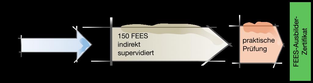 FEES-Ausbilder-Zertifikat